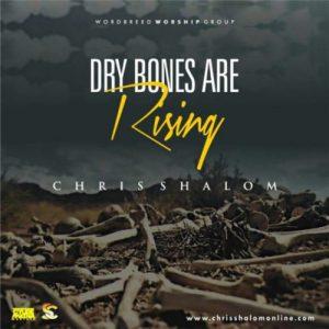 dry bones by chris shalom